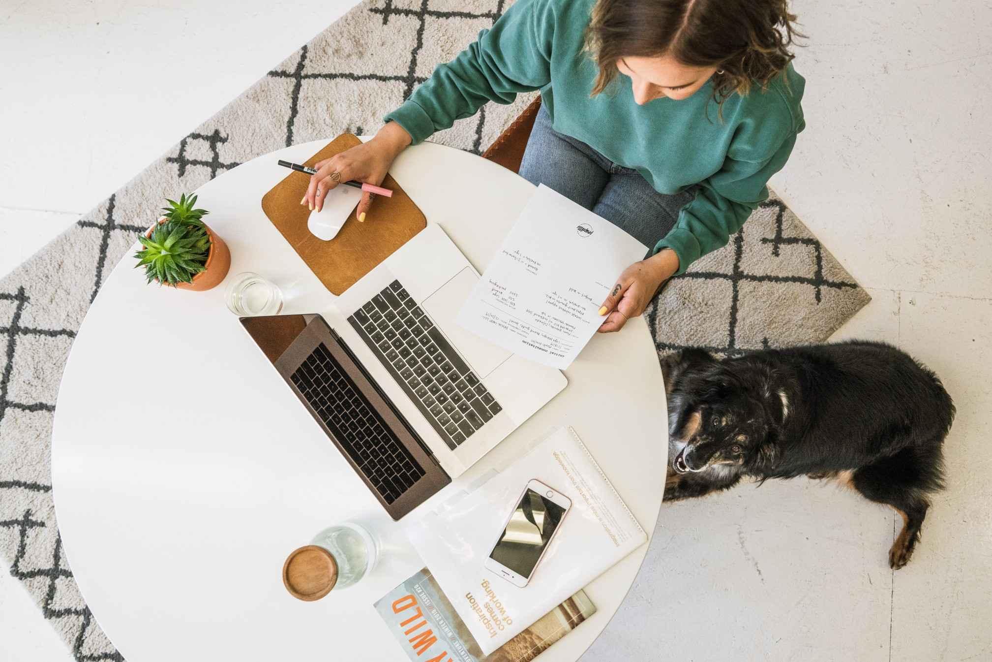 dog business working office pet computer work desk freelancer business woman t20 RzN7eQ